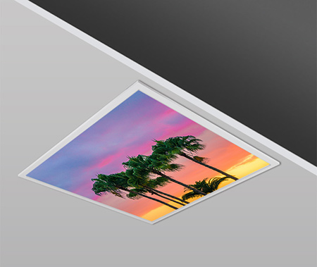 40W 60x60cm Slim PALM Dizayn Backlight Panel Armatürü PANA