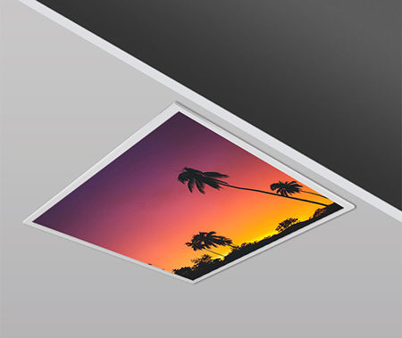 40W 60x60cm Slim SUN PALM Dizayn Backlight Panel Armatürü PANA