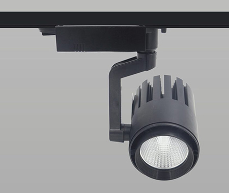 30W Cob Led Monofoze Ray Spot ECOLA